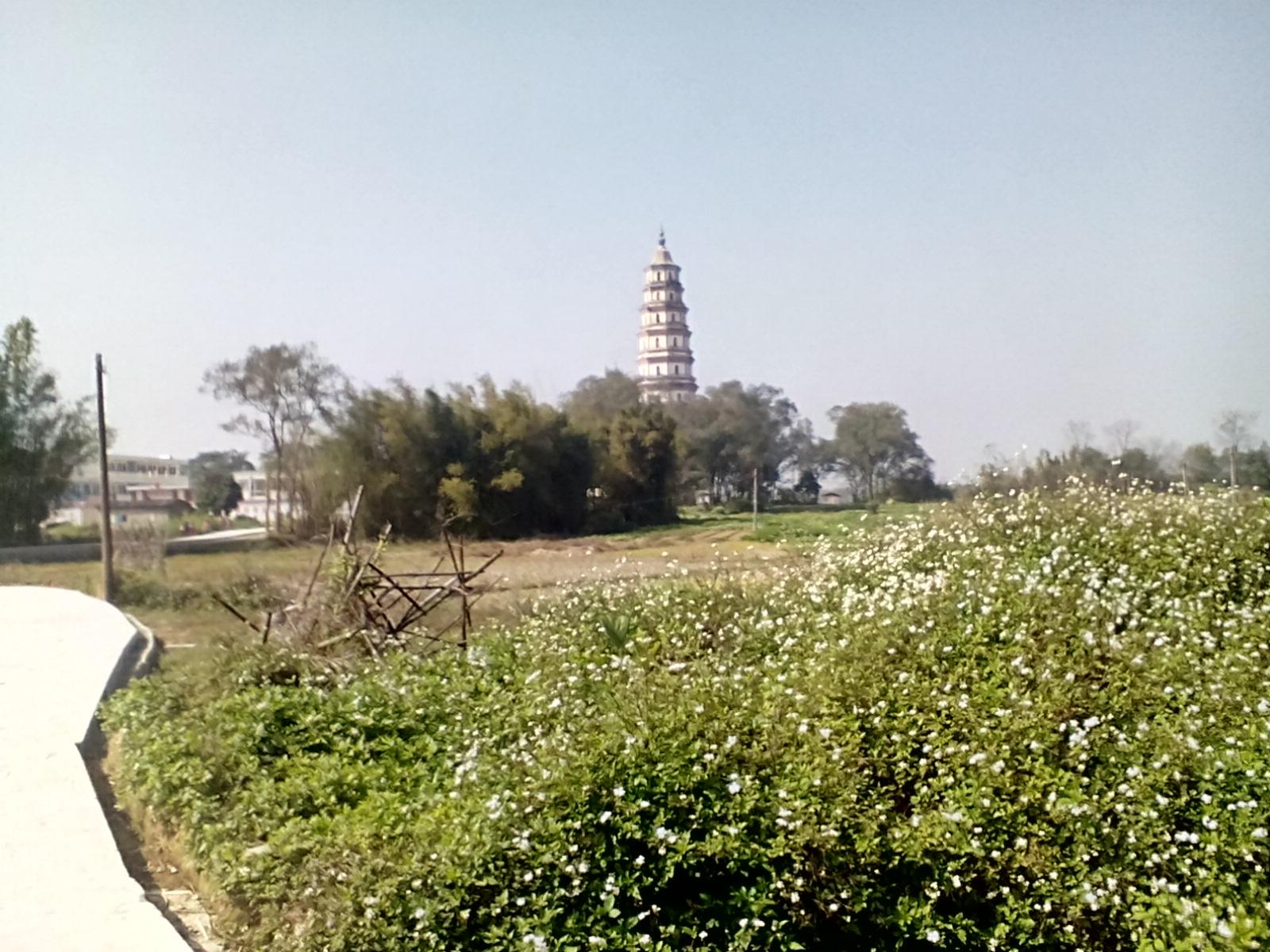 广西第一塔和桂平北回归线公园